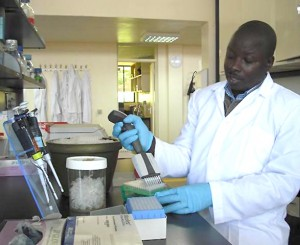 Laban Turyagyenda works   in a molecular laboratory at the BecA-ILRI Hub in Nairobi