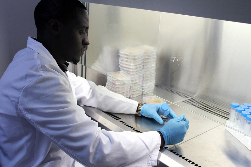 Samuel Angwenyi works in the mycotoxin analysis laboratory at the BecA-ILRI Hub in Nairobi