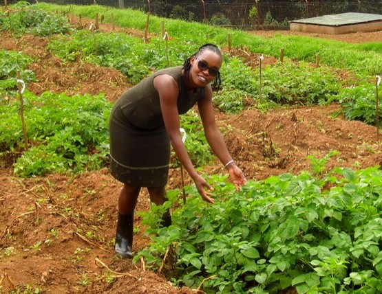 Anne Njoroge of CIP-SSA at a biotech potato confined trial site in Uganda (photo: NARO-KaZARDI/G. Baguma)