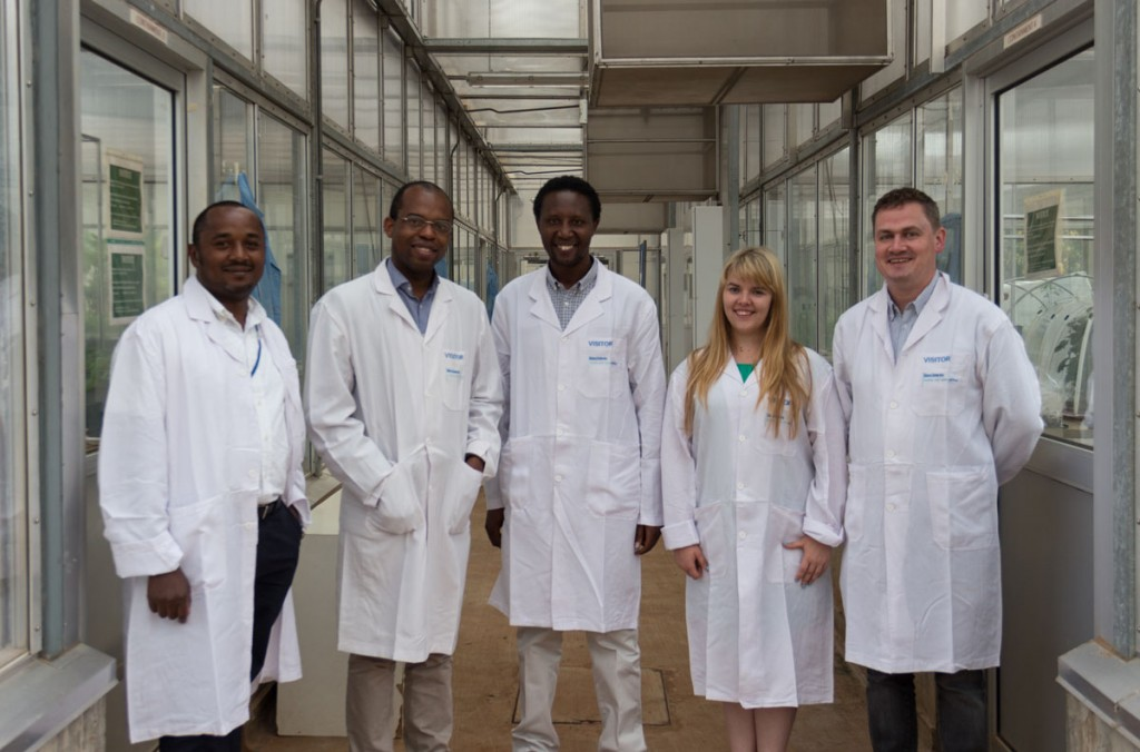 From left to right: Josiah Mutuku (BecA-ILRI Hub), Olu Shorinola (JIC), Steven Runo (Kenyatta University), Beccy Corkill (JIC) and Sam Mugford (JIC) at the BecA-ILRI Hub greenhouses (photo: JIC/ Matt Heaton